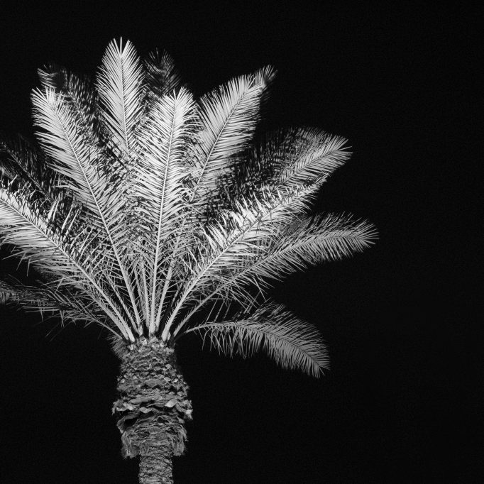 black and white night time photography